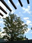 品川の空.jpg